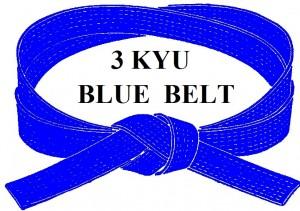 BLUE   BELT 3 KYU