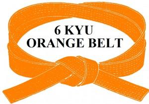 ORANGE  BELT 6 KYU