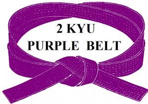 PURPLE  BELT 2 KYU