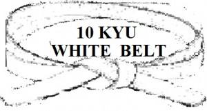 WHITE   BELT 10 KYU
