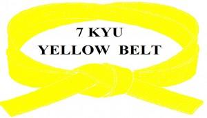 YELLOW BELT 7 KYU